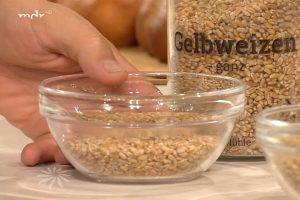 Mdr Sendung Haptsachen gesund vom 3.9.2020 Welche alte Getreidesorten bei UNverträglichkeiten besser sind